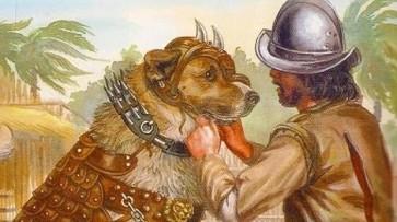 perros-conquistadores--620x349