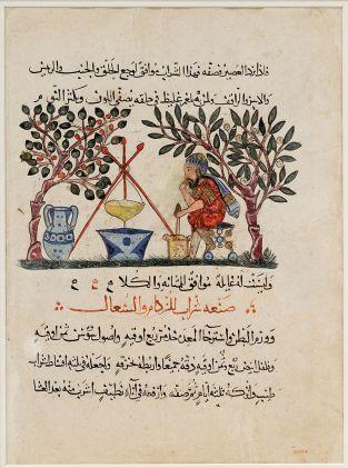 800px-Folio_Materia_Medica_Dioscurides_Met_13.152.6
